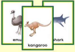 Australian Animal Themed Resources