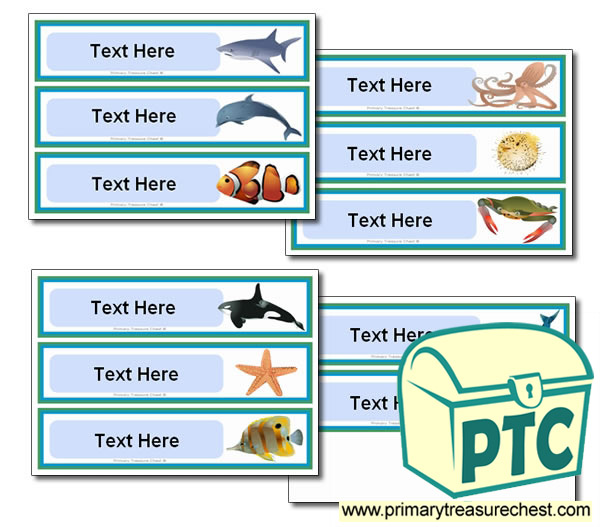Various Sea Life Themed Pupil Drawer Labels (Large)