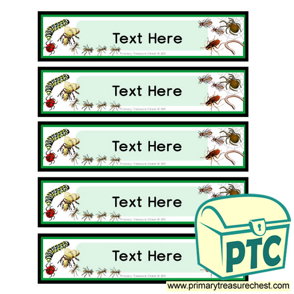 Minibeast Themed Pupil Drawer Labels (Small)