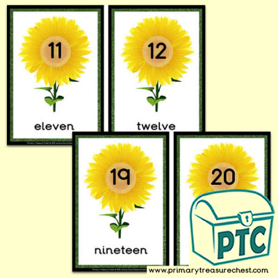 Sunflower Number Line 11 to 20