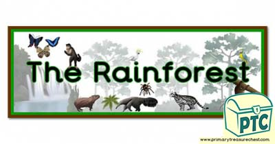 'The Rainforest' Display Heading/ Classroom Banner