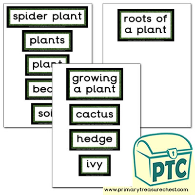 Plant Themed Display words