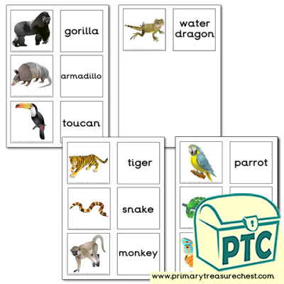 Jungle Animal Themed Matching Cards