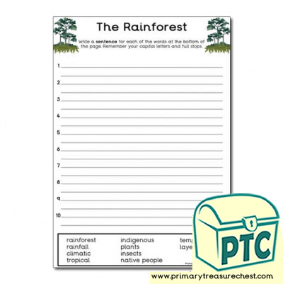 'The Rainforest' Themed Sentence Worksheet