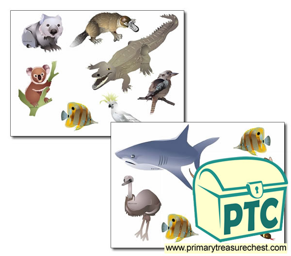 Australian Animal Storyboard / Cut & Stick Images