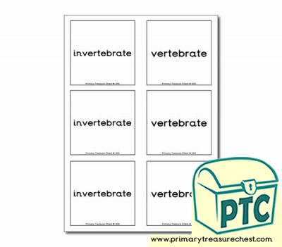 Vertebrate and invertebrate Matching Cards