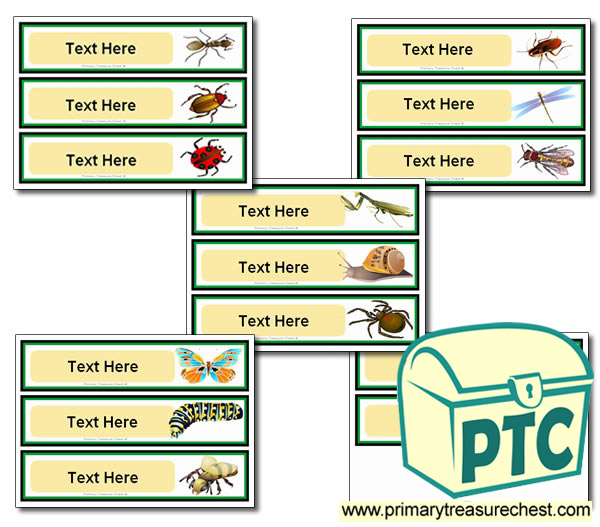 Various Minibeast Themed Pupil Drawer Labels (Large)