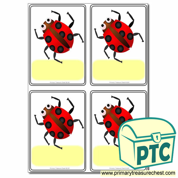 Minibeasts - Ladybird Themed Registration Name Cards