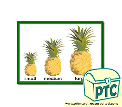 Pineapple themed Small - Medium - Large A4 poster