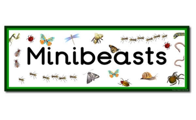 'Minibeasts' Display Heading /  Classroom Banner