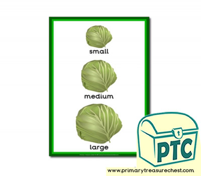 Cabbage themed Small - Medium - Large - A4 poster
