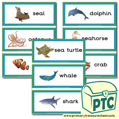 sea life Themed Flashcards