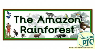 'The Amazon Rainforest' Display Heading/ Classroom Banner