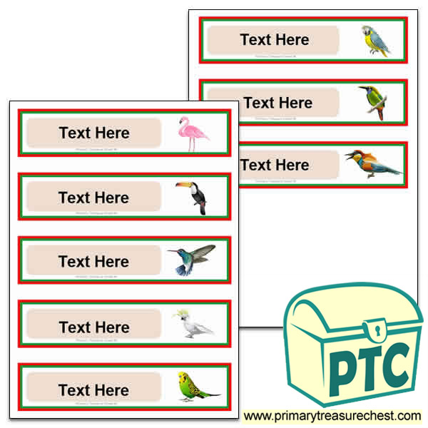 Tropical Birds Pupil Drawer Labels (Small)