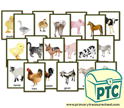 Farm Animals themed Posters