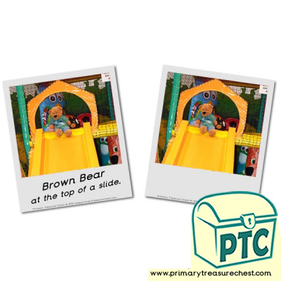 Brown Bear on Top of a Slide