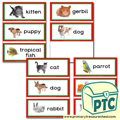 Pet Animals Themed Flashcards