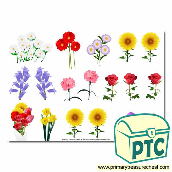 Flower Storyboard / Cut & Stick Images