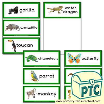Jungle Animal Themed Flashcards