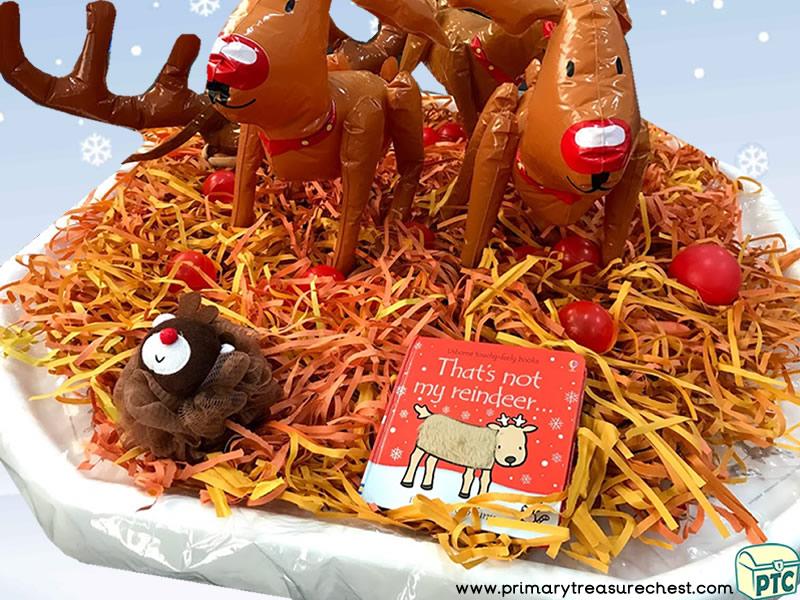 Christmas/Winter - Reindeer Themed Phonics - Multi-sensory – Shredded Paper -  Tuff Tray Ideas and Activities