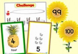 Number Lines & Challenges