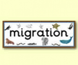 Animal Migration Resources