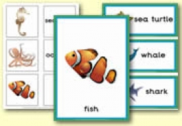 Sea Life Themed Resources