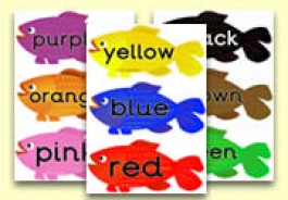 Common colour Words Resources