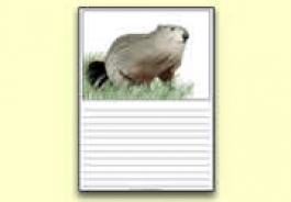 Groundhog Day Resources