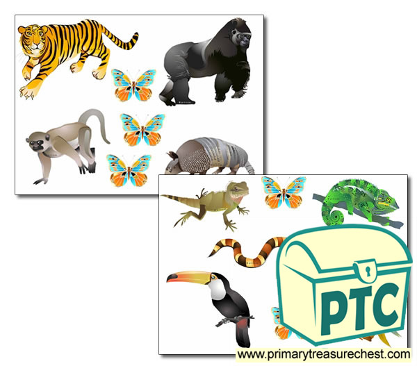 Jungle Animals Storyboard / Cut & Stick Images