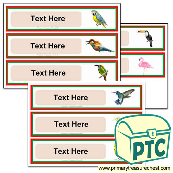 Tropical Birds Pupil Drawer Labels (Large)