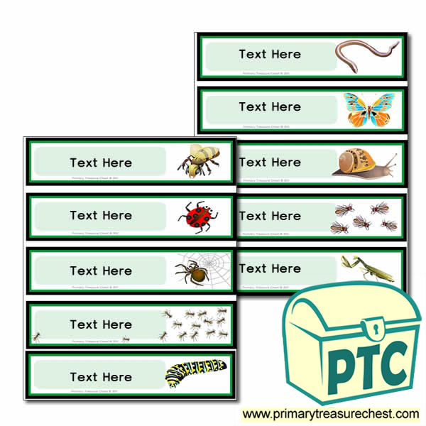 Various Minibeast Themed Pupil Drawer Labels (Small)