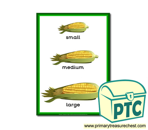 Corn on the cob themed 'Small - Medium – Large' - A4 poster