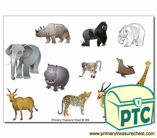 Zoo Animal Storyboard / Cut & Stick Images