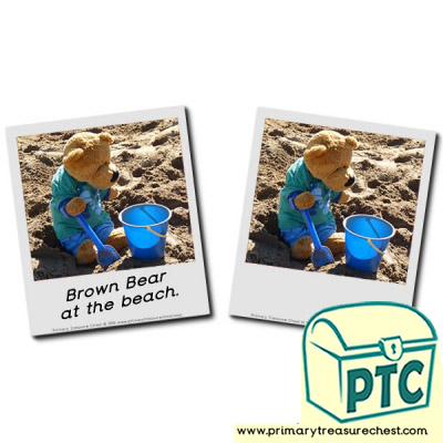 Where is Brown Bear? Brown Bear at the beach.