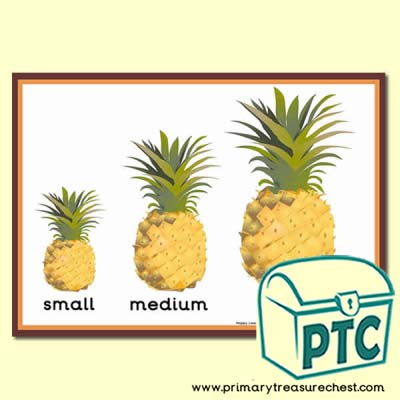 Pineapple Themed Different Sizes Poster