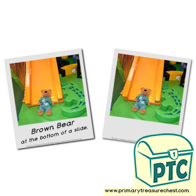 Photographs of Brown Bear on the bottom of a slide.