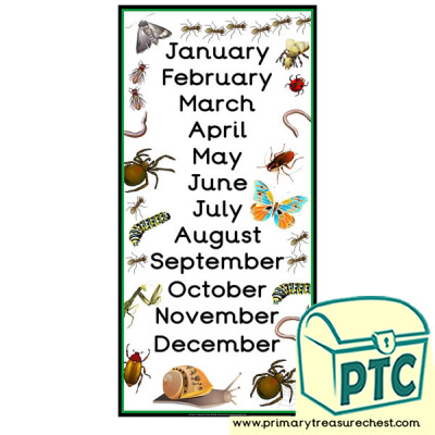 Minibeasts Themed Months of the Year Poster
