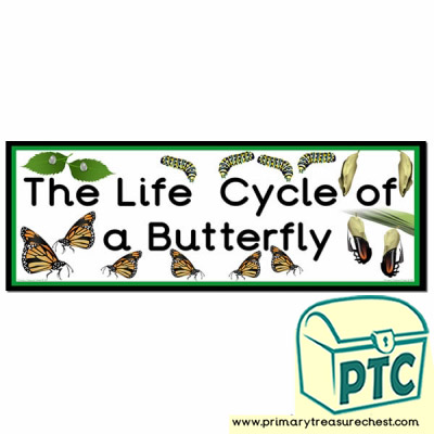 'The Life Cycle of a Butterfly' Display Heading/ Classroom Banner