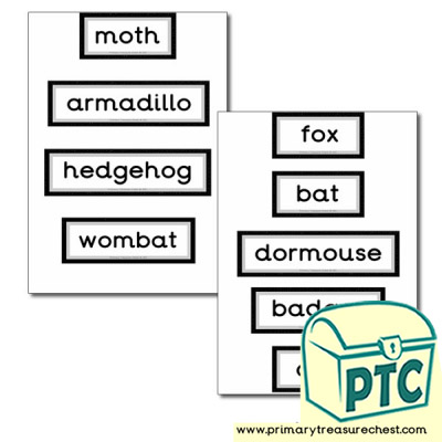 Nocturnal Animal Themed Display Words