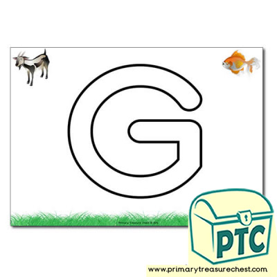 'G' Uppercase Bubble Letter A4 poster with high quality realistic images