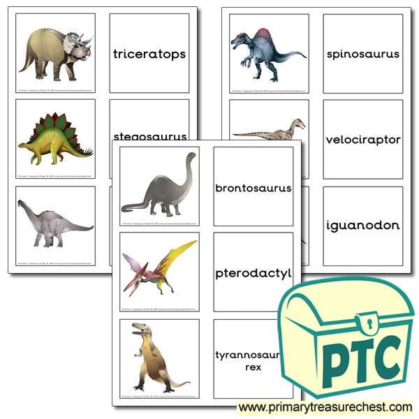 Dinosaur Themed Matching Cards