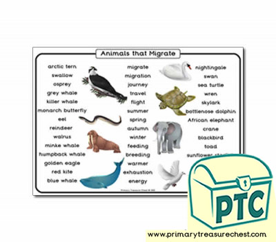 Animal Migration Themed Word Mat Primary Treasure Chest