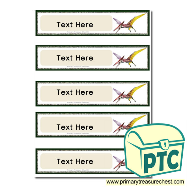 Pterodactyl Dinosaur Themed Pupil Drawer Labels (Small)