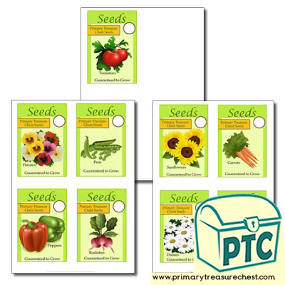 Role Play Garden Centre Packets of Seeds