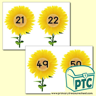 Sunflower  Number Line 21-50